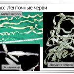 Портативное пуско зарядное (пусковое) устройство для аккумулятора автомобиля E-Power 12100 mAh